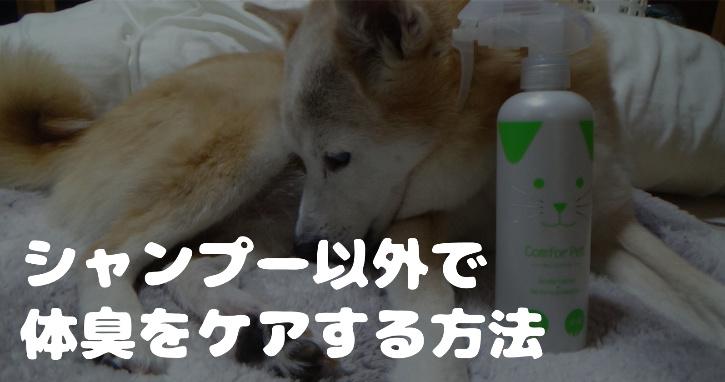 シャンプーを嫌がる犬の体臭をカンファペットで消臭