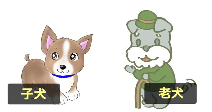 子犬と老犬