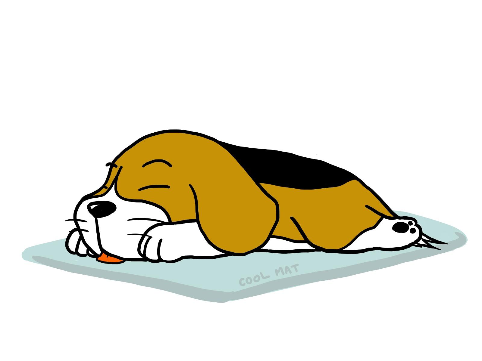 耳の病気にかかってしまうたれ耳の犬
