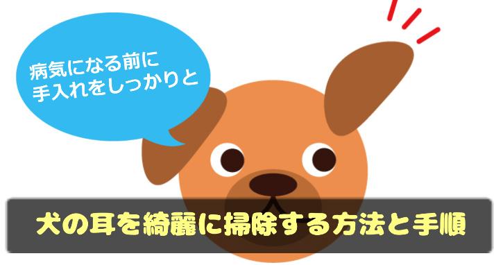 犬の耳を綺麗に掃除する方法と手順!病気になる前に手入れをしっかりとしよう