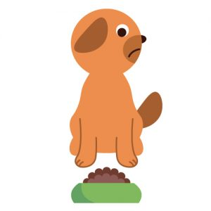 エサを食べない犬