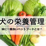 【犬の栄養管理】人間の食べ物は絶対ダメ!体に一番良いペットフードとは?