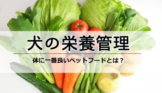 【犬の栄養管理】人間の食べ物は絶対ダメ!一番体に良いペットフードとは?