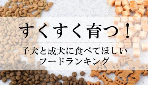 【子犬・成犬に両対応】絶対に食べさせたいドッグフードおすすめランキング