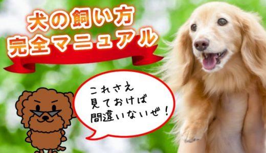 【必見!犬の飼い方完全マニュアル】飼育の黄金ルールをすべて凝縮しました